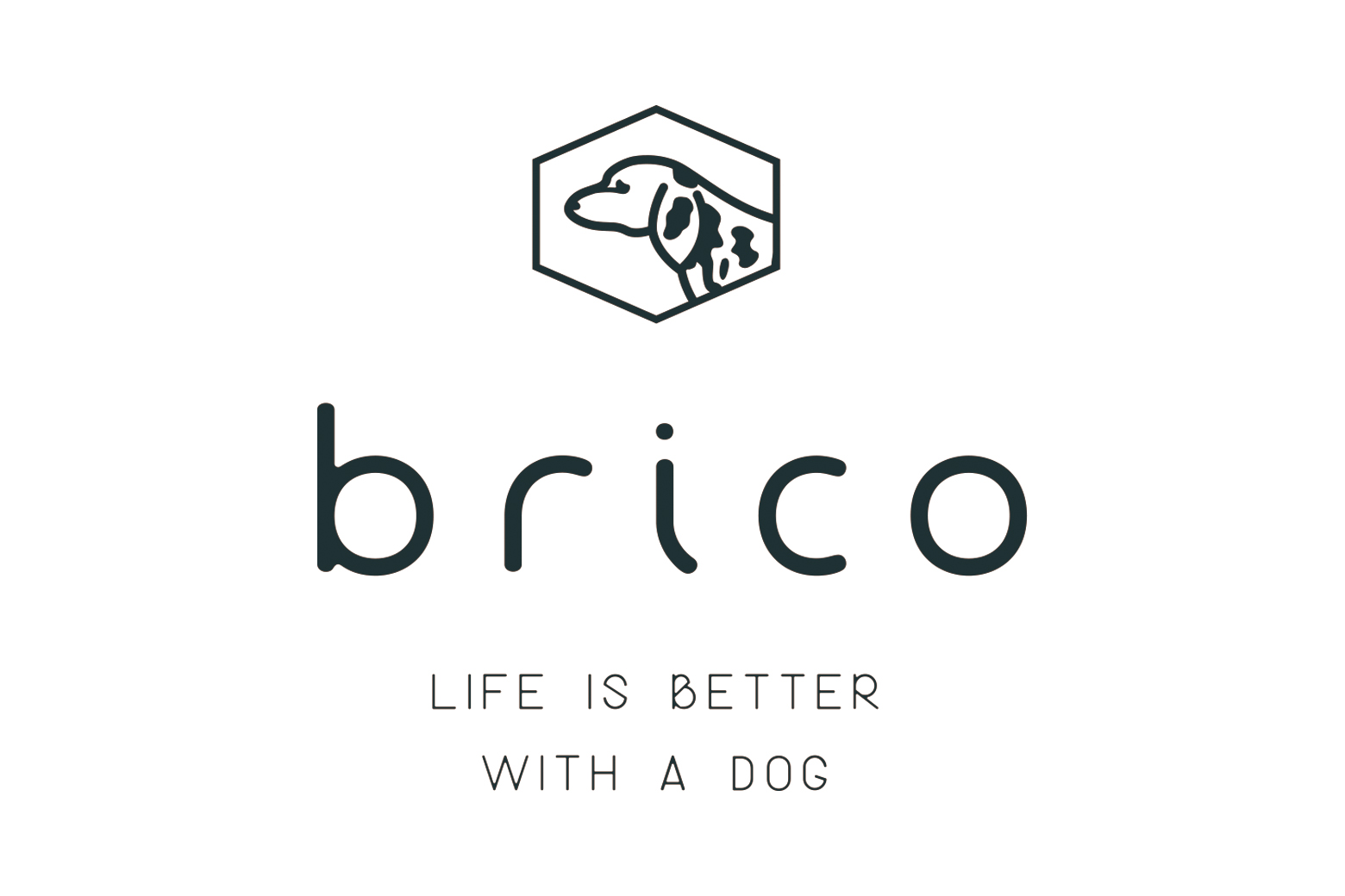 brico